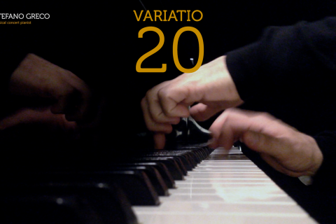 Bach. Goldberg Variations. Variatio 20