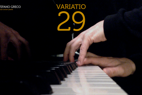 Bach. Goldberg Variations. Variatio 29