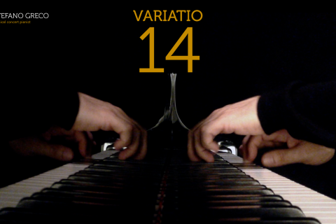 Bach. Goldberg Variations. Variatio 14