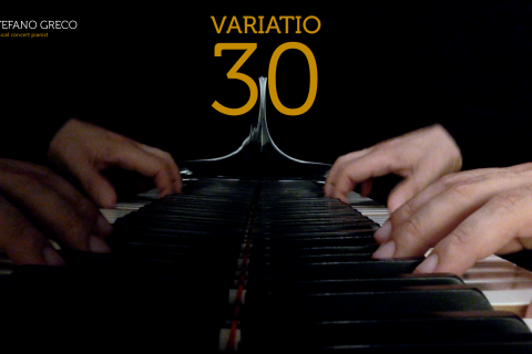 Bach. Goldberg Variations. Variatio 30